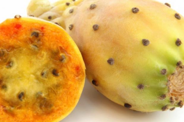 Колючая груша или опунция – вид мексиканского кактуса